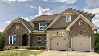 Soddy Daisy Single Family Home For Sale: 13167 Blakeslee Dr #Lot 66