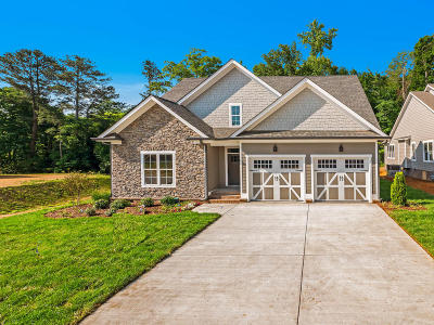 Ooltewah Single Family Home For Sale: 9458 Silver Stone Ln #27
