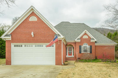Soddy Daisy Single Family Home Contingent: 10205 Jirah Ct
