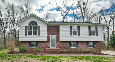 Ringgold Single Family Home Contingent: 107 Lerae Rd