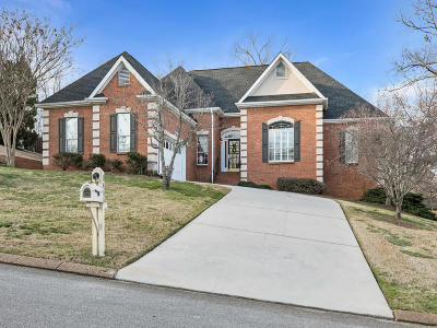 Ooltewah Single Family Home For Sale: 9453 Lazy Circles Dr