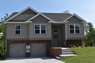 Soddy Daisy Single Family Home For Sale: 1086 Longo Dr #73