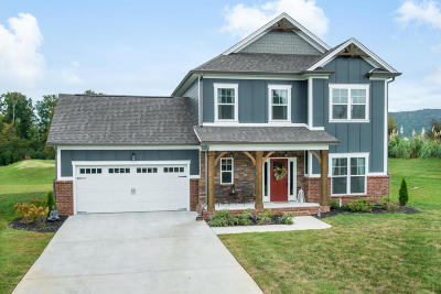 Ooltewah Single Family Home For Sale: 8187 Propeller Dr