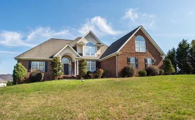 Ringgold Single Family Home For Sale: 80 Green Hill Dr