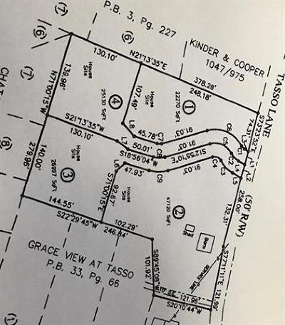 Cleveland Single Family Home For Sale: Lot 1 Tasso Ln