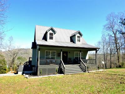 Decatur Single Family Home For Sale: 372 Hiwassee Cir