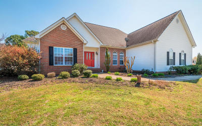 Ooltewah Single Family Home For Sale: 2810 Ooltewah Ringgold Rd