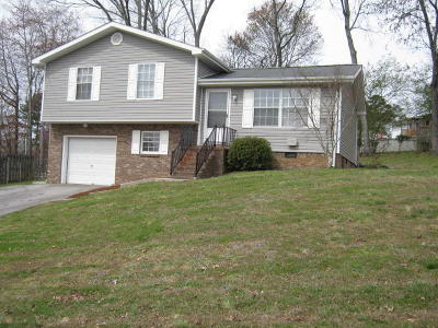 Soddy Daisy Single Family Home For Sale: 1524 N Winer Dr