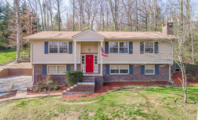 Signal Mountain Single Family Home For Sale: 809 Ravine Rd