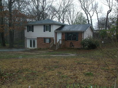 Ringgold Single Family Home For Sale: 604 Stapp Dr