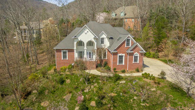 Hixson Single Family Home For Sale: 7567 Rocky Ledge Rd