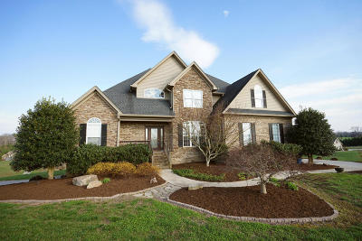 Ooltewah Single Family Home For Sale: 10650 Quarter Horse Ln