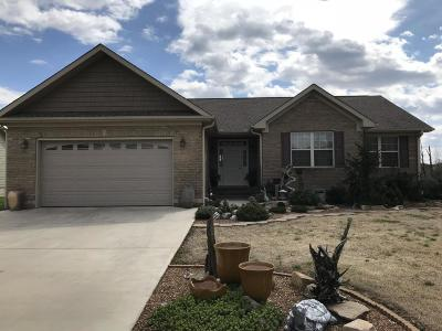 Single Family Home For Sale: 413 Wilson Ct