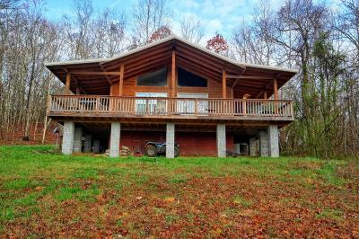 Spring City Single Family Home Contingent: 1416 Stump Hollow Rd