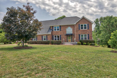 Chattanooga Single Family Home For Sale: 9500 Stone Mist Ln