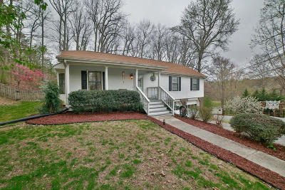 Hixson Single Family Home For Sale: 435 Sandalwood Dr