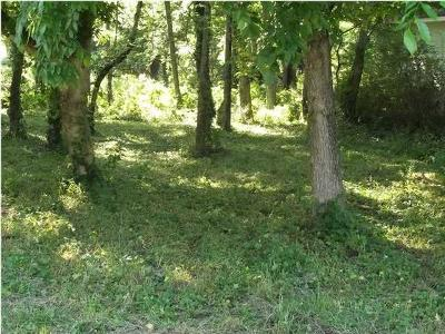 Chattanooga Residential Lots & Land For Sale: 4221 Cain Ave