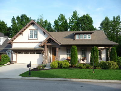 Chattanooga Single Family Home For Sale: 840 Waterthrush Ln