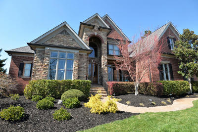 Ooltewah Single Family Home For Sale: 2315 Heavenly View