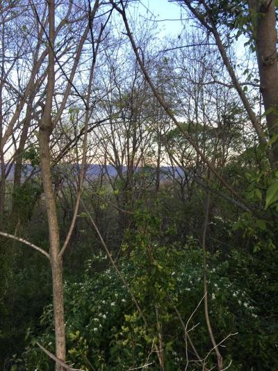 Hixson Residential Lots & Land For Sale: 6577 Fairview Rd