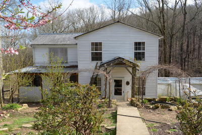 Spring City Single Family Home For Sale: 254 Browns Holler