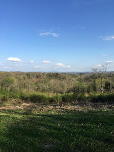 Hixson Residential Lots & Land For Sale: 6560 Fairview Rd #1