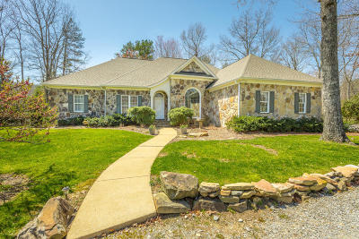 Signal Mountain Single Family Home For Sale: 736 Clear Brooks Dr Dr