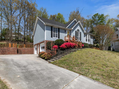 Hixson Single Family Home For Sale: 917 Autumnbrook Ln