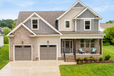 Ooltewah Single Family Home For Sale: 9527 Silver Stone Ln