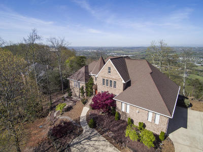 Ooltewah Single Family Home For Sale: 9705 Mountain Lake Dr