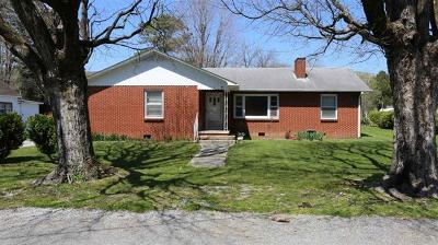Spring City Single Family Home For Sale: 348 Cash St