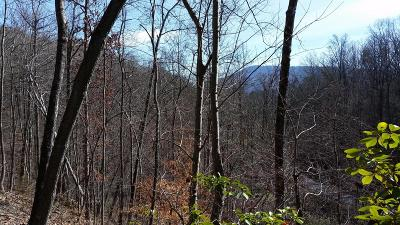 Chattanooga Residential Lots & Land For Sale: Pan Gap Rd