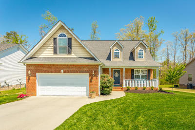 Ringgold Single Family Home Contingent: 164 Carrigan Cir