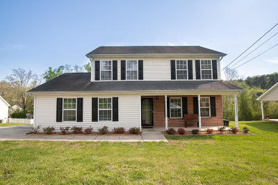 Ringgold Single Family Home Contingent: 145 Pine Grove Access Rd