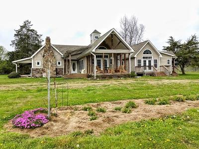 Ringgold Single Family Home Contingent: 670 Temperance Hall Rd