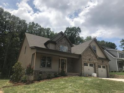 Ooltewah Single Family Home For Sale: 9434 Silver Stone Ln #24
