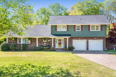 Hixson Single Family Home For Sale: 229 Masters Rd