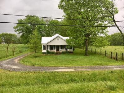 Rising Fawn Single Family Home For Sale: 5219 S Us 11 Hwy