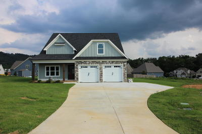 Ooltewah Single Family Home For Sale: 7510 Hollydale Ln