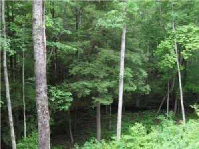 Residential Lots & Land For Sale: 26 Two Lake Tr