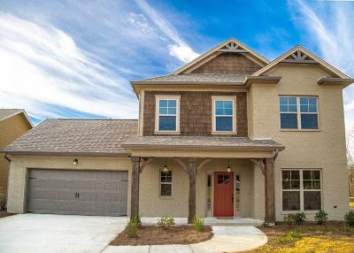 Ooltewah Single Family Home For Sale: 8217 River Birch Loop #2