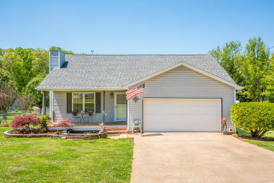 Ringgold Single Family Home For Sale: 261 Gentry Rd