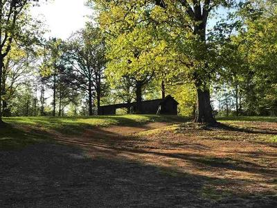 Old Fort Single Family Home For Sale: 170 SE Washboard Rd