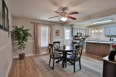 Ringgold Single Family Home For Sale: 247 Spring Hill Dr