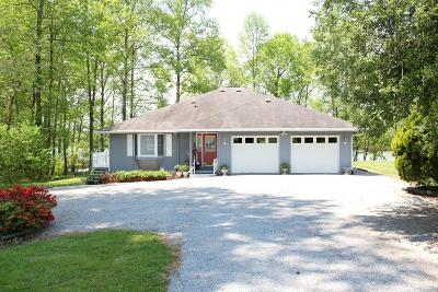 Spring City Single Family Home Contingent: 431 Dogwood Dr #14