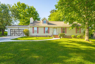 Ringgold Single Family Home Contingent: 184 U.s. Grant Dr