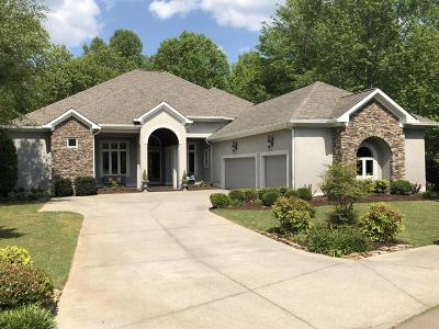 Chattanooga Single Family Home For Sale: 648 Magnolia Vale Dr