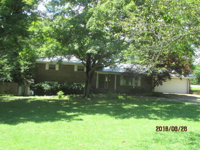 Hixson Single Family Home For Sale: 1041 W Boy Scout Rd