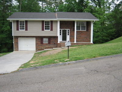Soddy Daisy Single Family Home Contingent: 1602 S Winer Dr