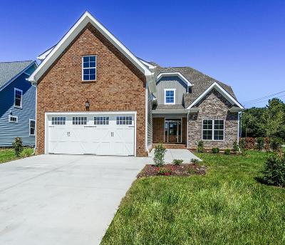 Ooltewah Single Family Home For Sale: 9543 Silver Stone Ln #Lot 1